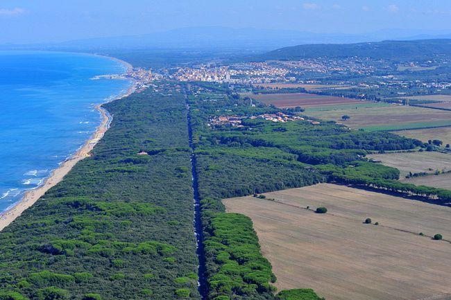 The pinewood15 Km south Castiglioncello (Marina di Cecina)