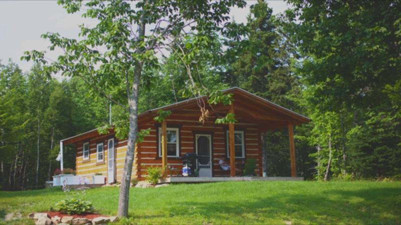 Modern Log Cabin (25 min drive from Baddeck), alquiler de vacaciones en North Shore