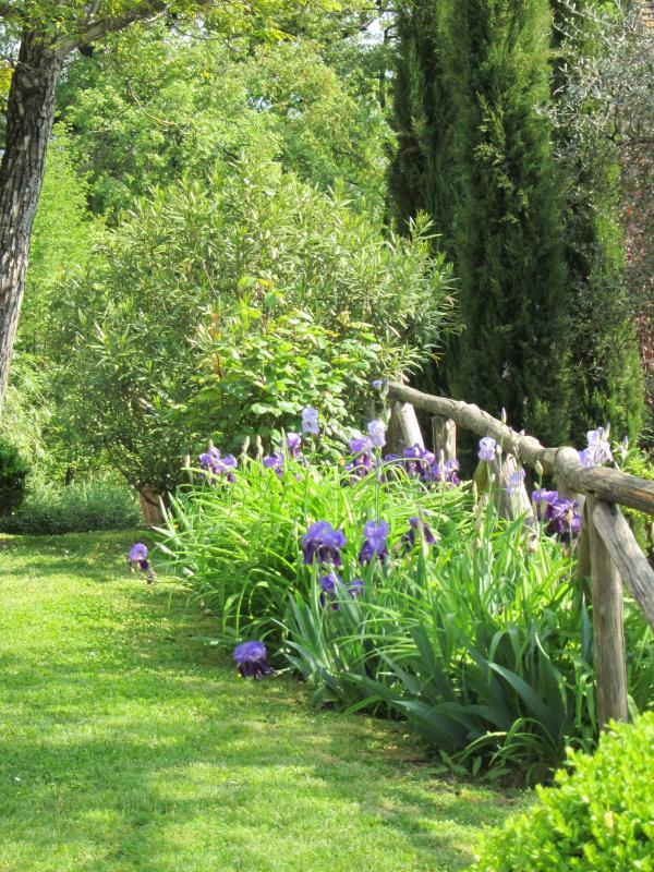 The garden by the farmhouse