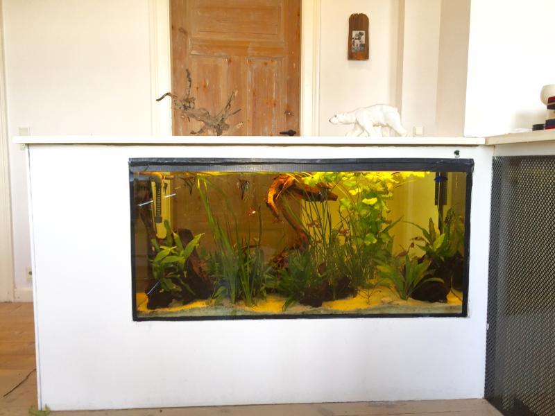 Built in Aquarium.