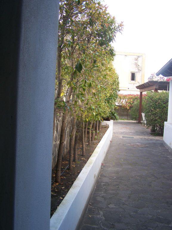 avenue ground floor