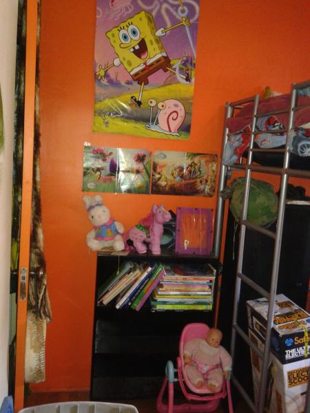 kids room books and ladder up bunk
