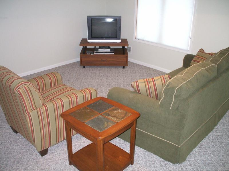 Lower level living room (with queen size sofa sleeper)