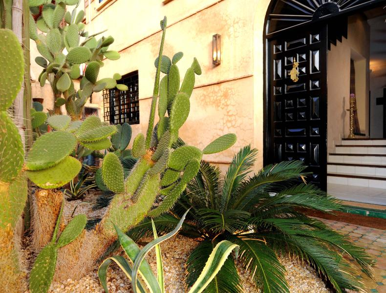 Entrance with a garden adorned with cacti.