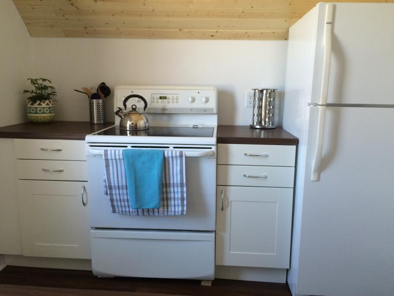 A newly renovated kitchen.