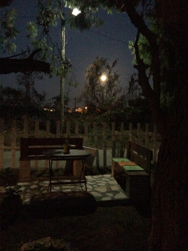 benches for romantic moments under the moon