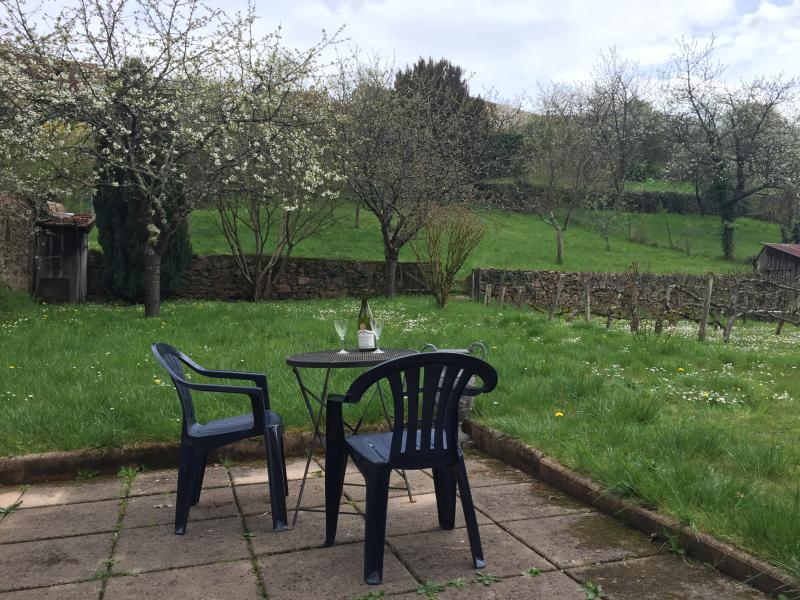 Patio View of Our Apple Orchard in Spring