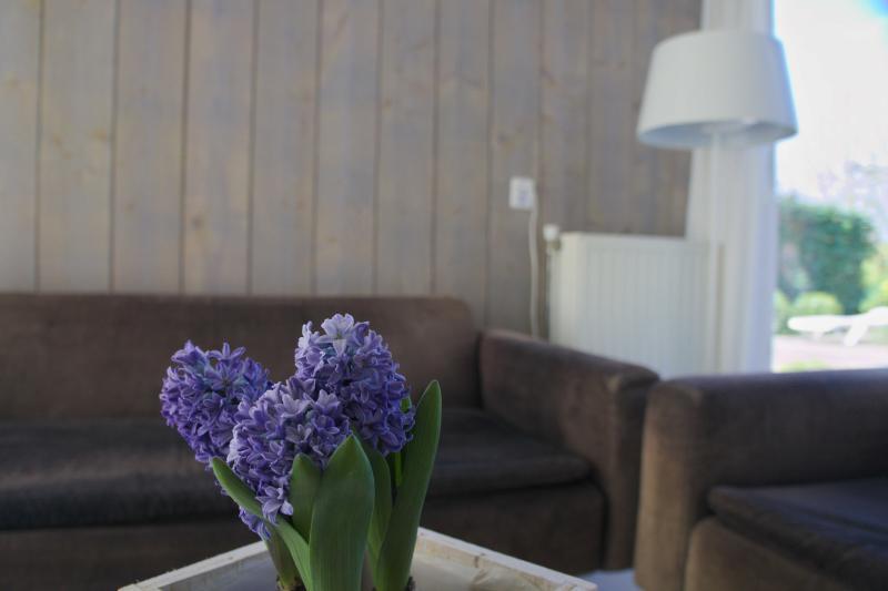 Living room details - De Kastanje Ouddorp
