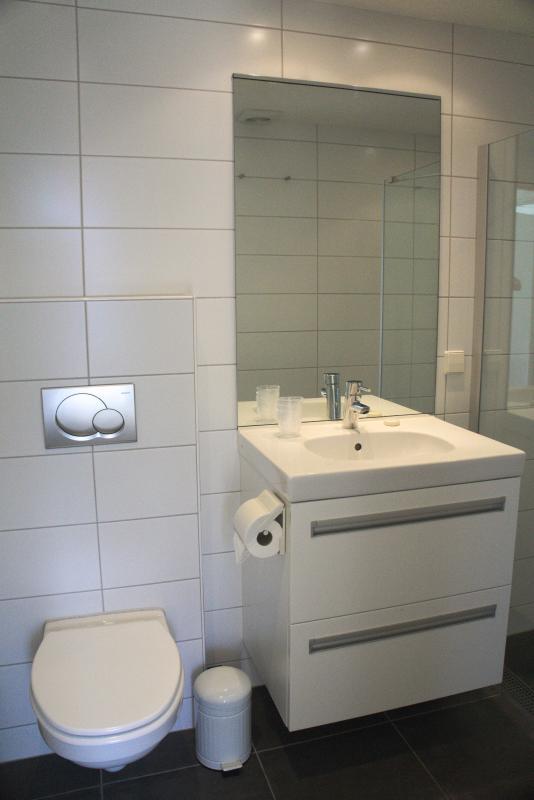 Bathroom (toilet) - De Kastanje Ouddorp