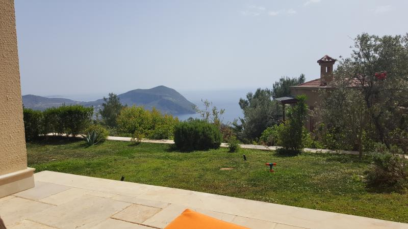 stunning views from the terrace