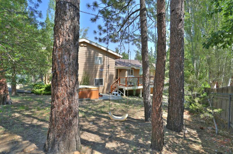Large fully fenced yard! DOG FRIENDLY!! We even have a tree swing for our littlest guests!