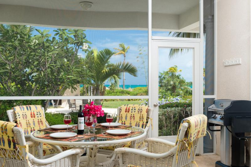 Screen in patio with amazing view