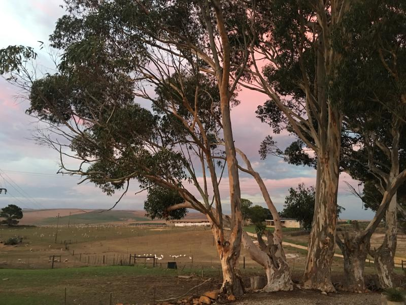 Sandfontein Farm host deSkaap