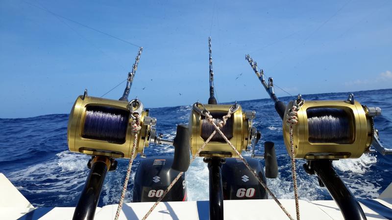high quality Equipment for fishing