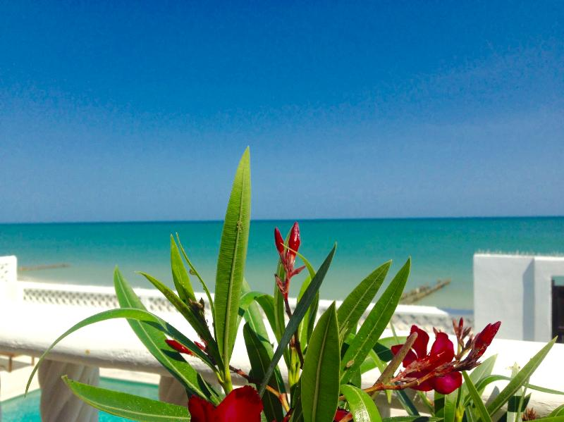 View from Jaguar Villa of the Gulf of Mexico!