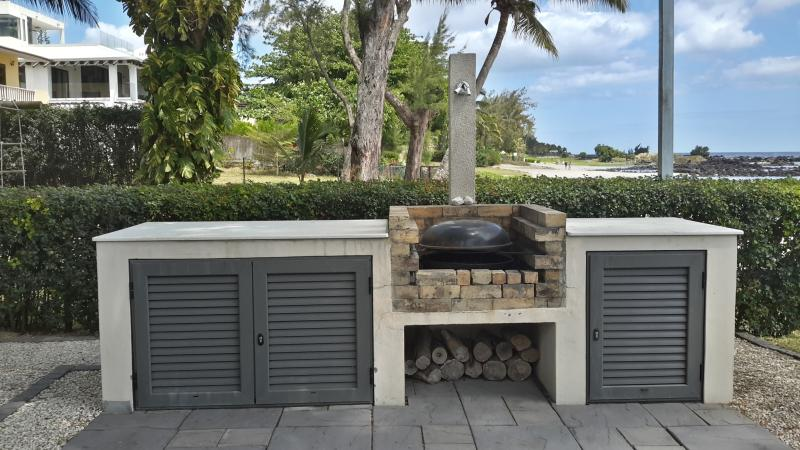 charcoal barbecue and gas barbecue available