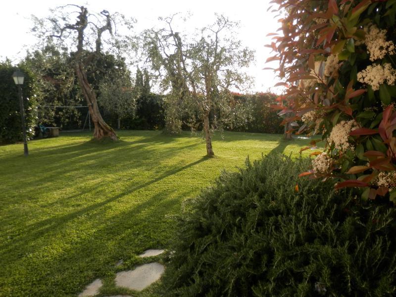 Cuore Della Toscana, holiday rental in Palaia