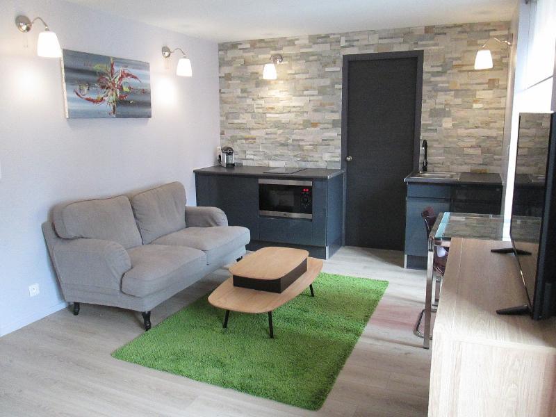 STUDIO 30 m²  ' RESIDENCE DU PARC ' CLASSE 3 ETOILES, holiday rental in Ronchamp