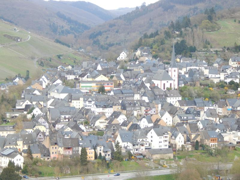 View of Enkirch the magical wine village