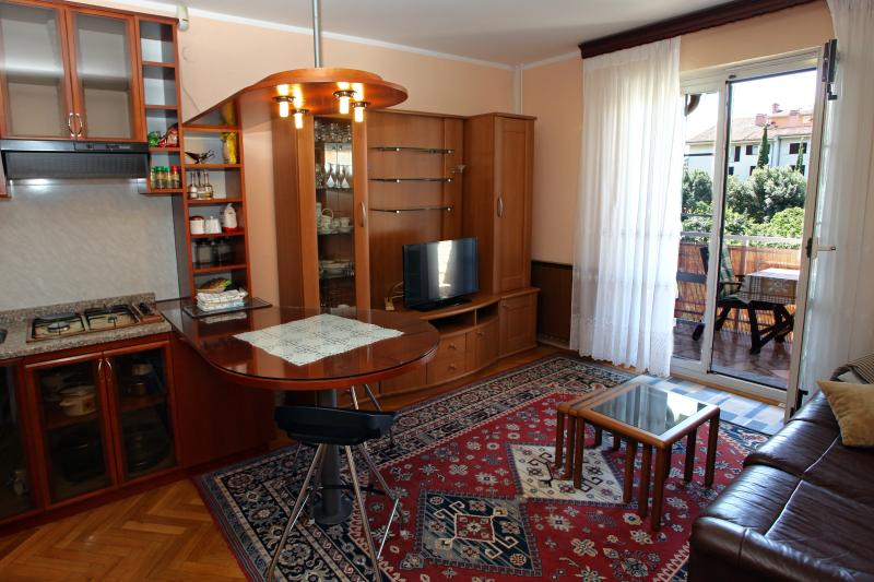 LP1 Apartment with Air Condition and WiFi, vacation rental in Dragonja
