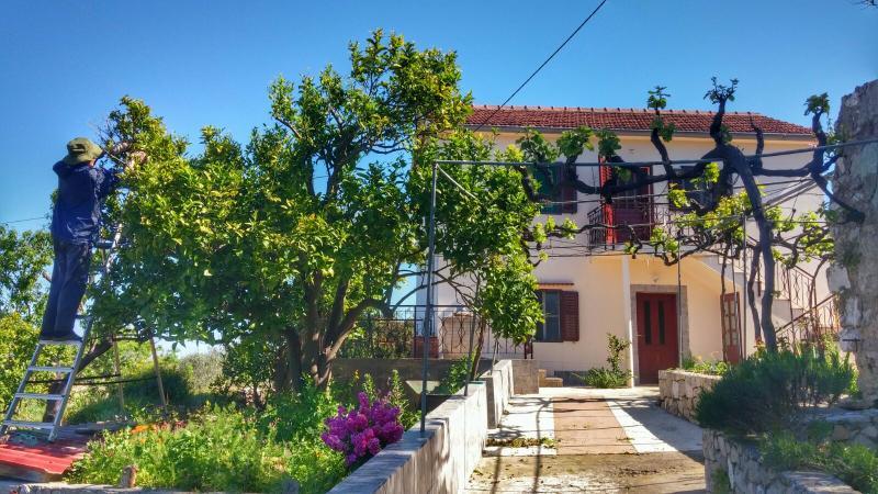 Vintage house on an island, location de vacances à Veli Iz