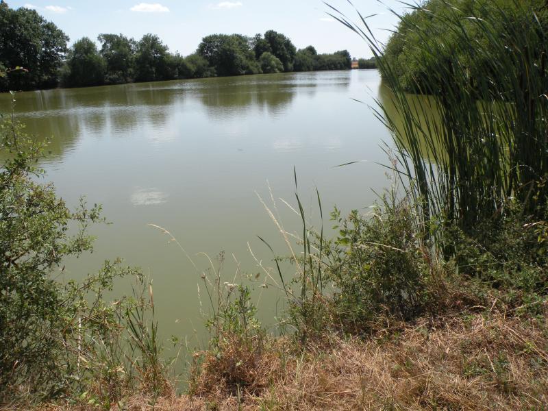 L'étang près du bourg (lieu de promenade)
