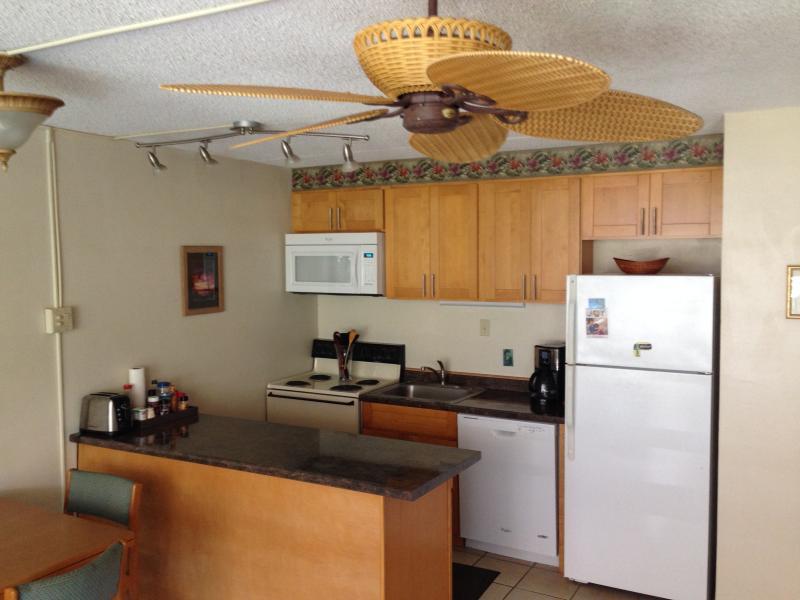 Newly Remodeled Full Kitchen