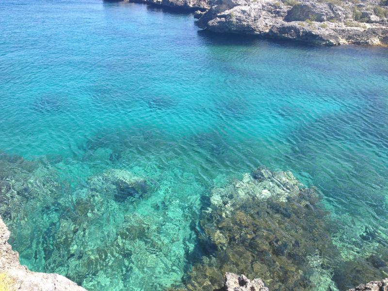 Crystal clear waters - the most incredible swimming experience!