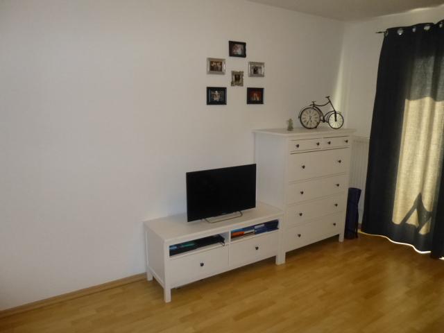 Livingroom, sideboard, SAT-TV (100 cm)