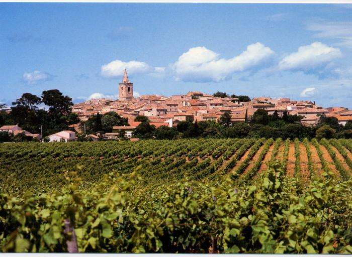 View of the village from the vineyards