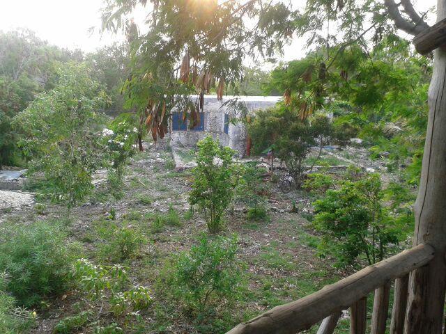 Swahili Bush House, holiday rental in Jambiani