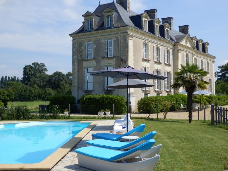 B&B Chateau La Mothaye - Loire Valley - Brion, holiday rental in Jarze