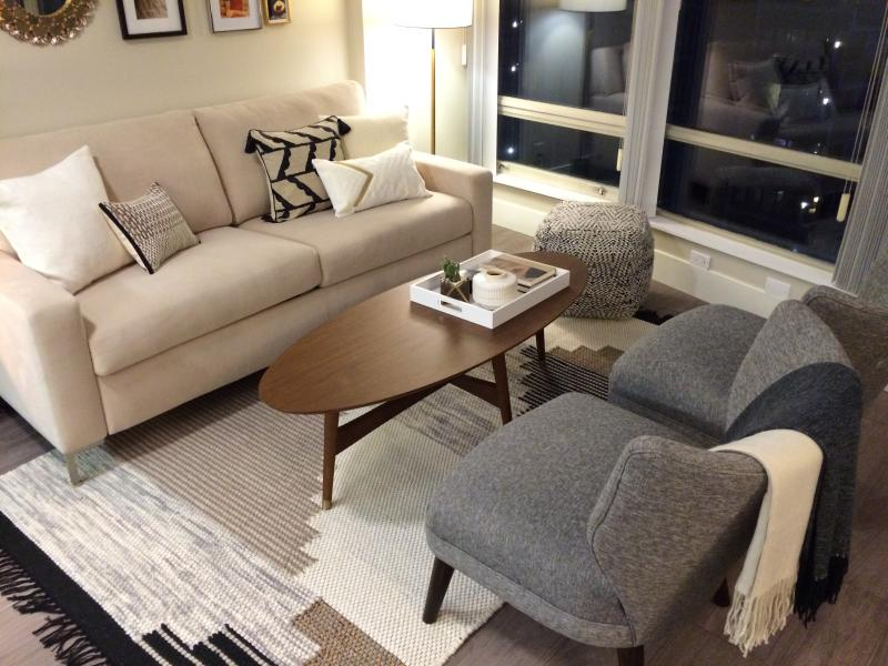 Luxury living room designed for relaxing in total comfort.  West Elm designed furnishings.