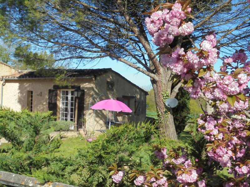 Ophelia, holiday rental in Serres-et-Montguyard