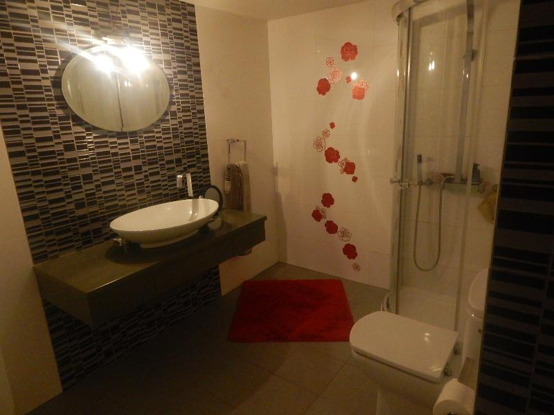This is the bathroom with shower cabin and WC