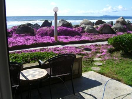 Nothing Between You And The Ocean..!!, holiday rental in San Diego