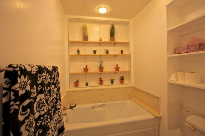 Master bathroom tub, separate shower, closet and vanity