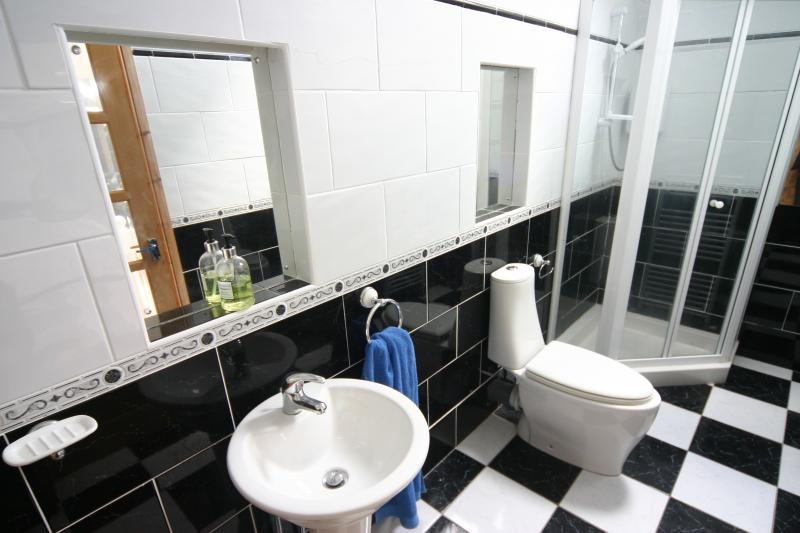 The modern shower room