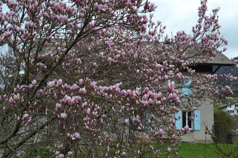 Gab's HouseVallee au coeur de la vallée de l'Arve, casa vacanza a Onnion