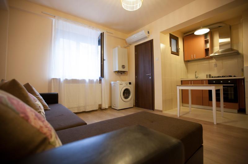 Studio 24, vacation rental in Iasi