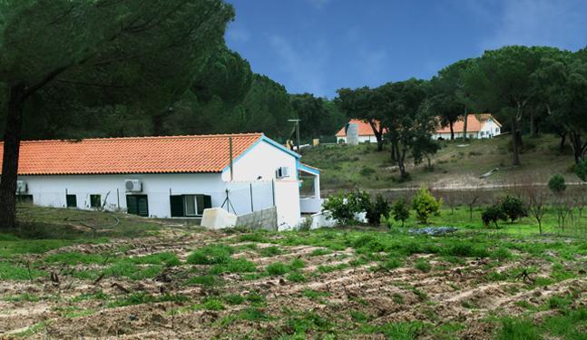 Monte da Granja Nova, holiday rental in Avis