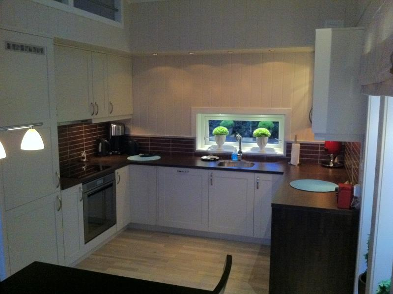 Kitchen with dishwasher, fridge, oven, micro, coffemaker +++