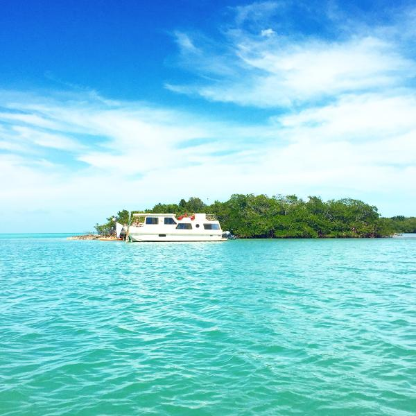 Quiet Cove Key with docked houseboat. Rent it with or without the 4 bedroom home on shore.