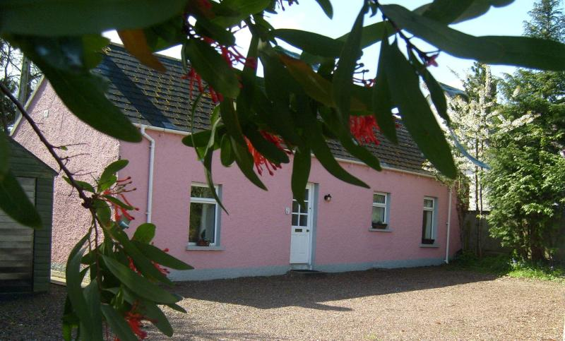 Cottage in Belfast, vacation rental in Belfast