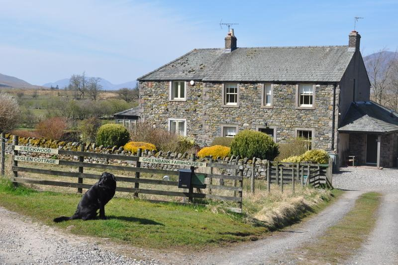 Glen Cottage,  Matterdale, Nr Ullswater, holiday rental in Dockray