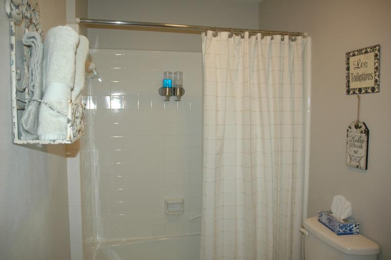 Vintage bath has soap and shampoo dispenser in the shower.