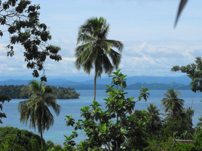 Great Caribbean view
