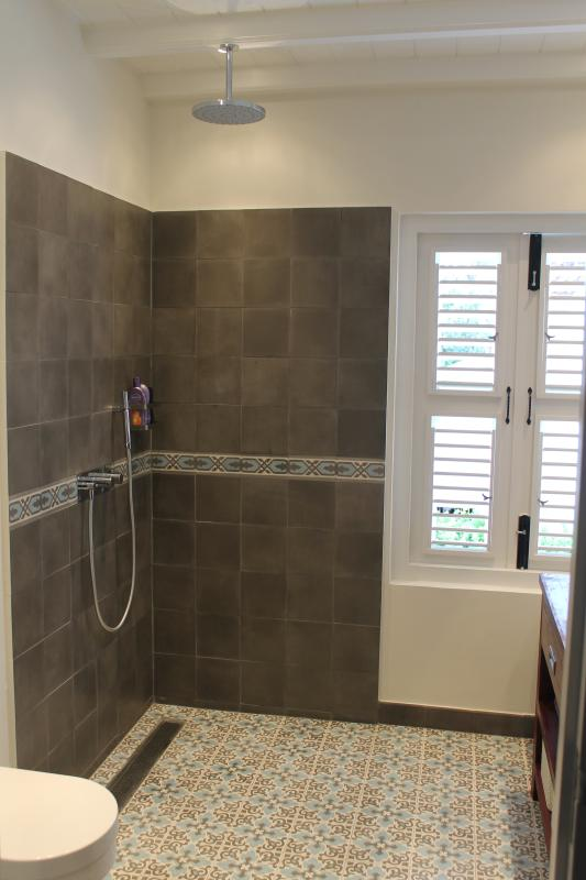 Bathroom with beautiful Portuguese tiles and a rain shower with separate hand shower.