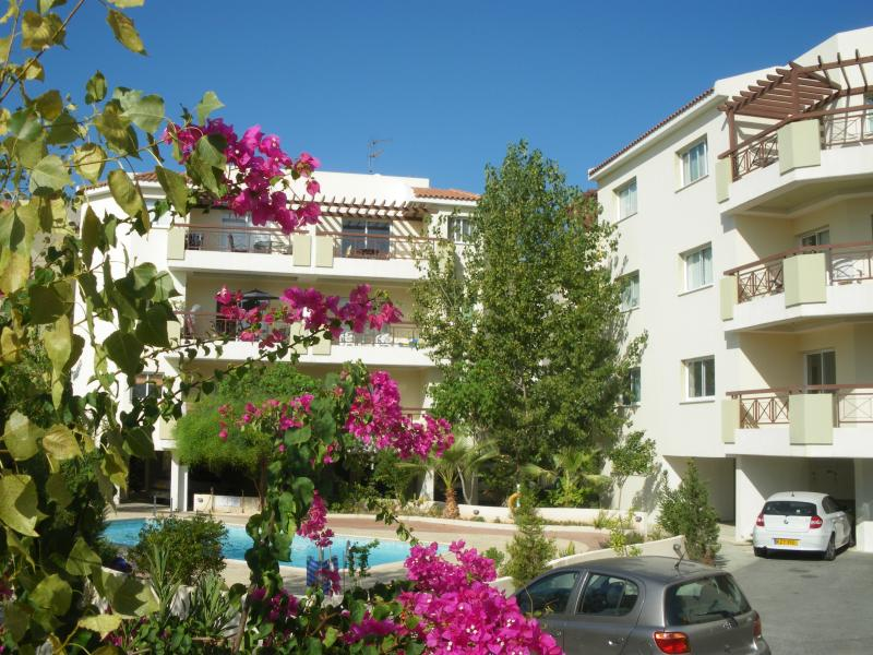 1 bed with wifi on complex, vacation rental in Paphos