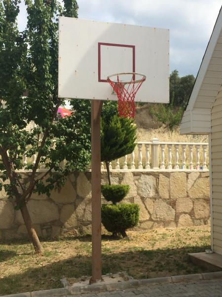 Regulation size/height  basketball net , on private car drive